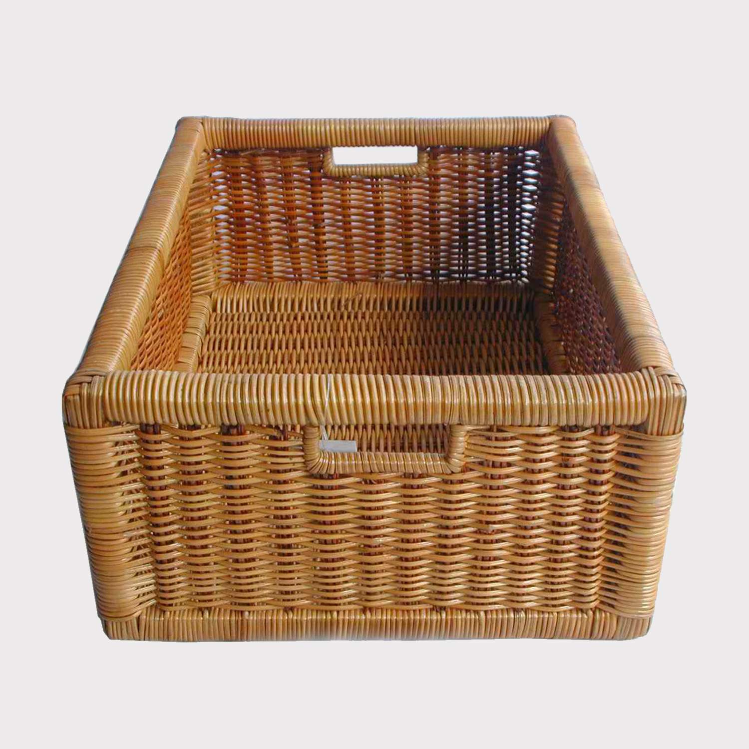 Fern Basket 230011