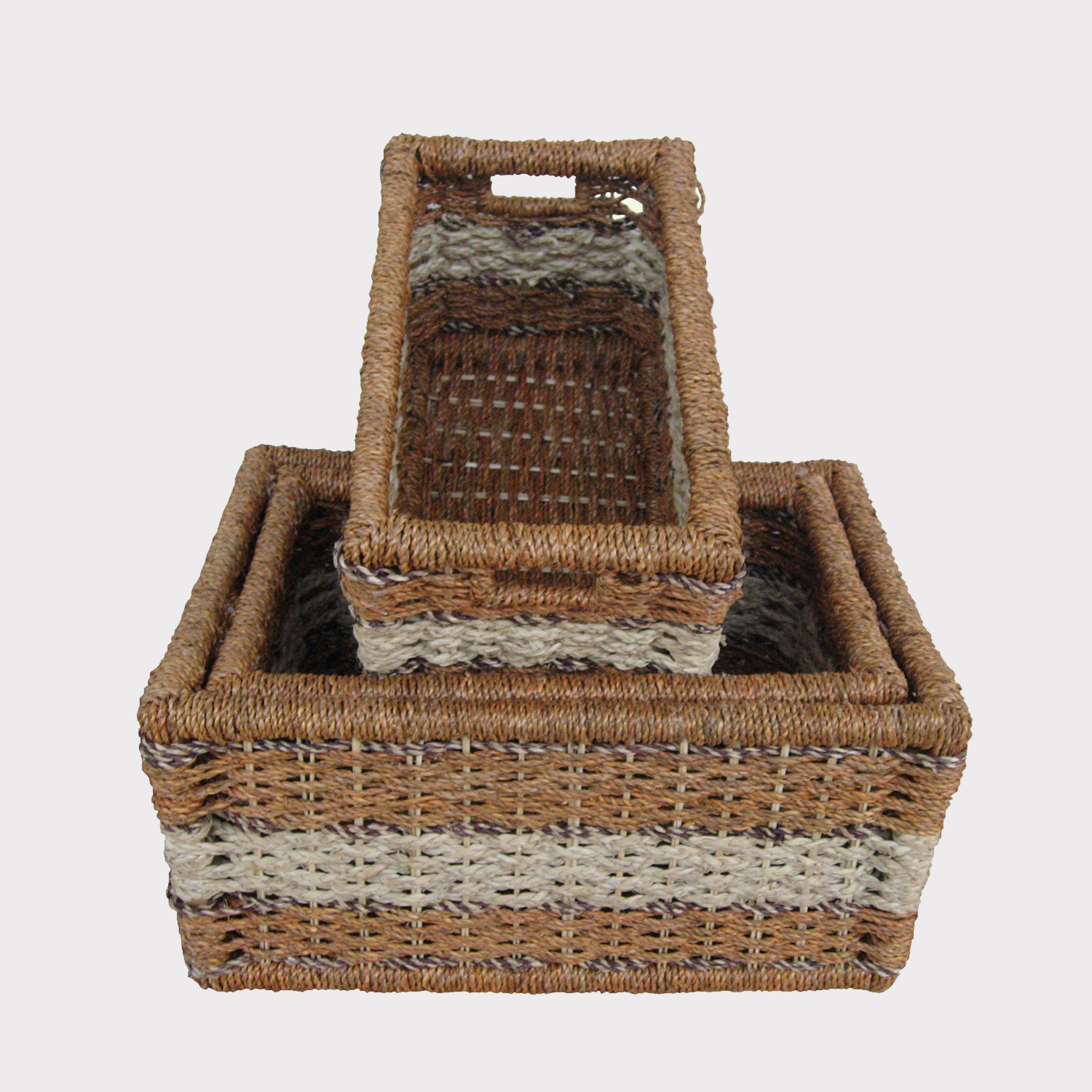 Fern Basket 230114-3