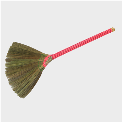 Grass-Broom-260101