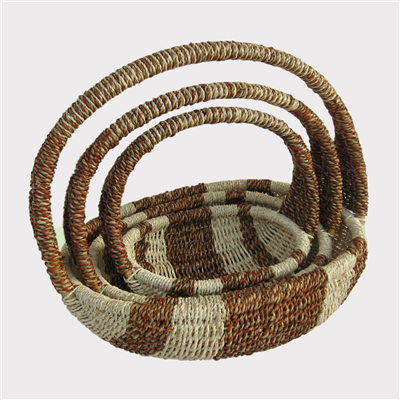 Fern-Basket-250028-3