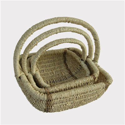 Fern-Basket-250029-3