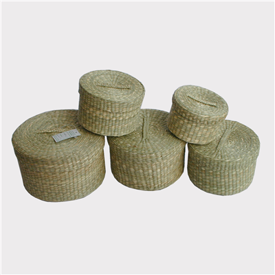 Seagrass-Box-510009-5
